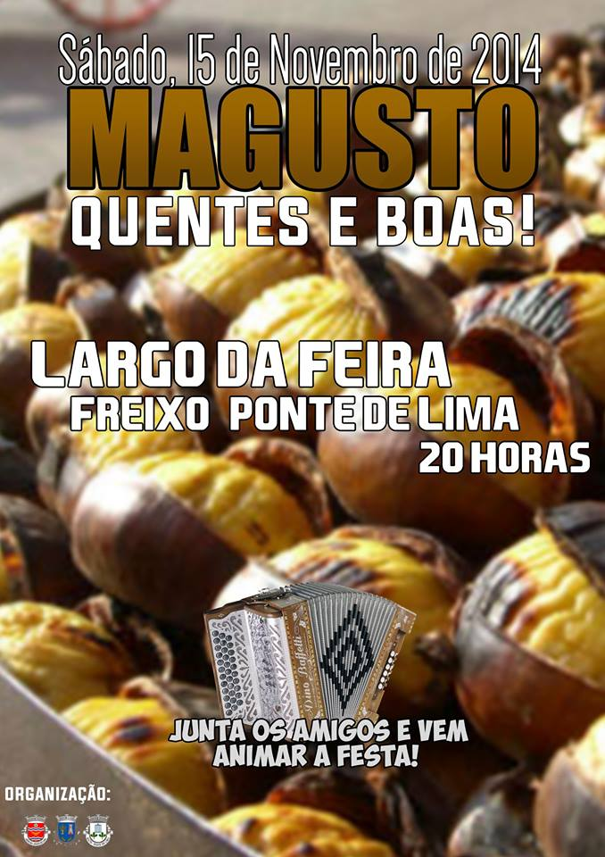 Magusto 2014